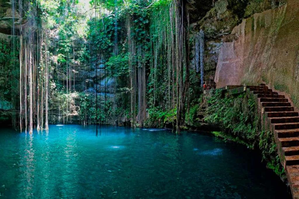 dip in the fresh watercenotessituated all aroundCancun