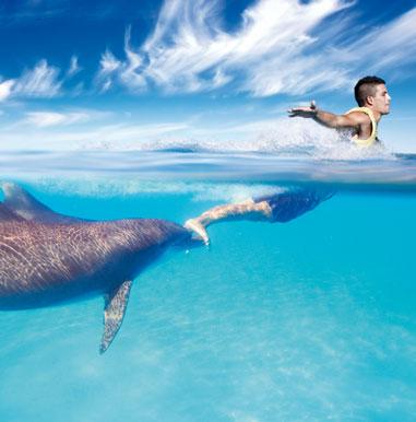 swimprogram