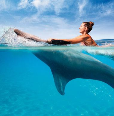 Dolphin Swim en Dolphinaris Riviera Maya