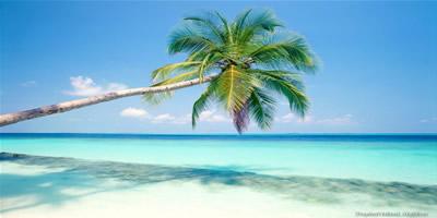 6 Things to do in Playa del Carmen